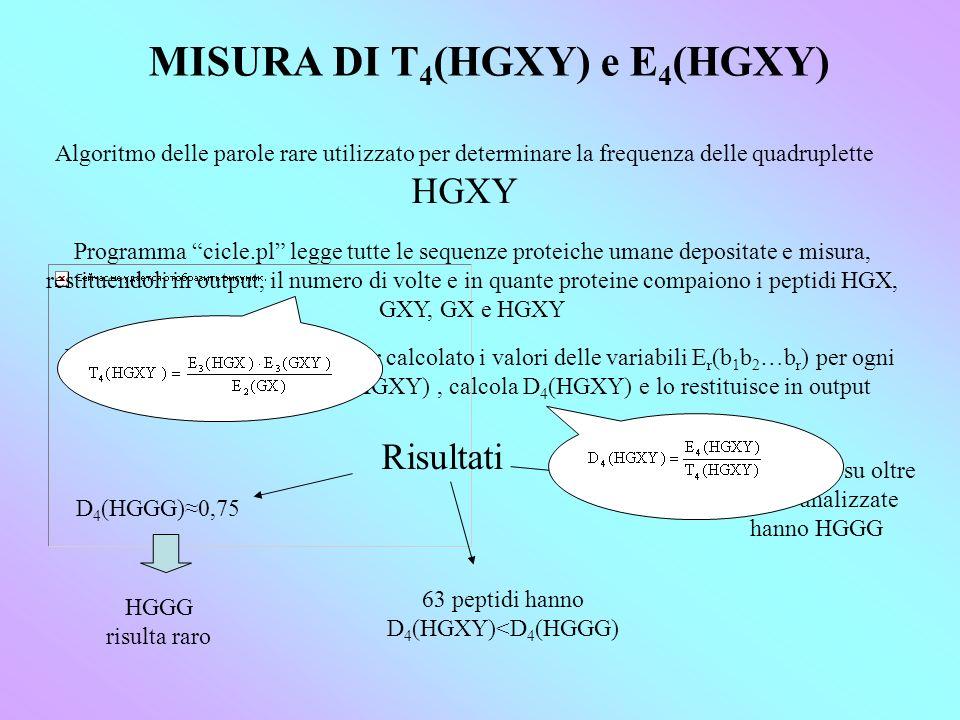 MISURA DI T4(HGXY) e E4(HGXY)