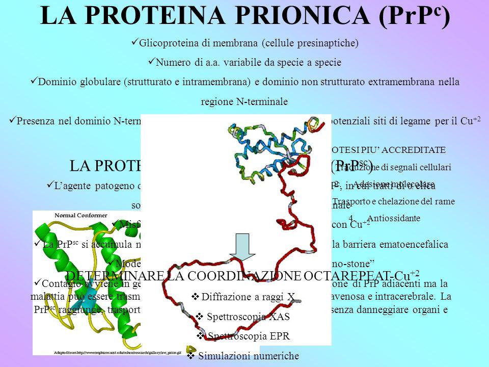 LA PROTEINA PRIONICA (PrPc)