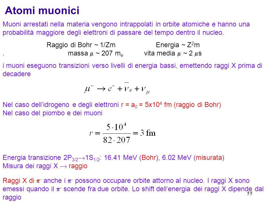 Atomi muonici