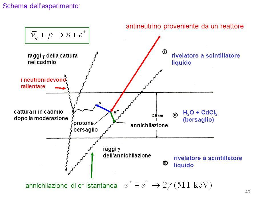 Schema dell'esperimento: