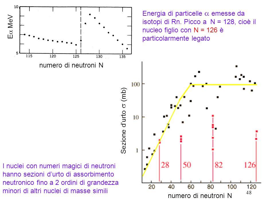 Energia di particelle a emesse da isotopi di Rn