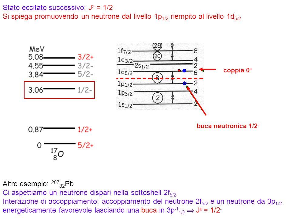 Stato eccitato successivo: Jp = 1/2- Si spiega promuovendo un neutrone dal livello 1p1/2 riempito al livello 1d5/2