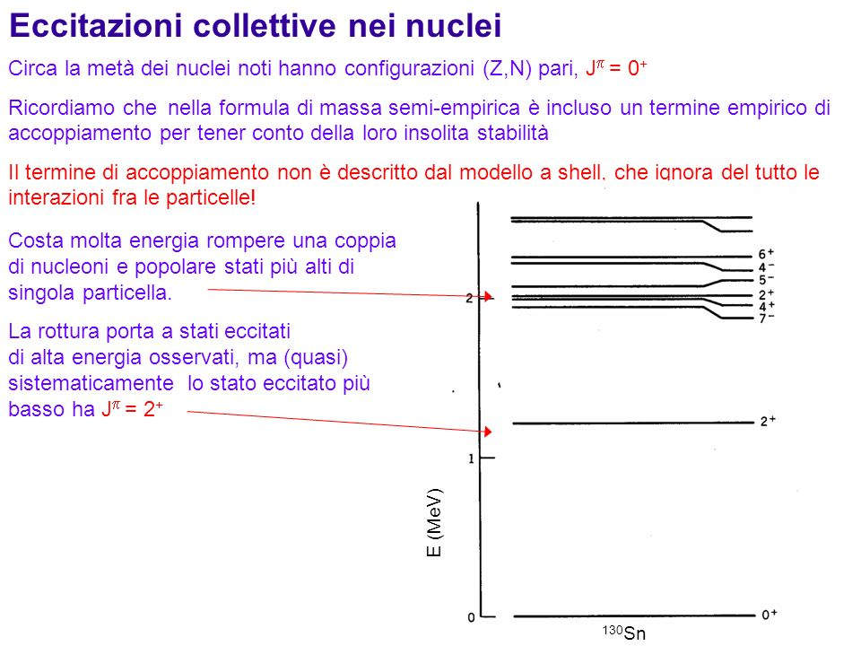 Eccitazioni collettive nei nuclei