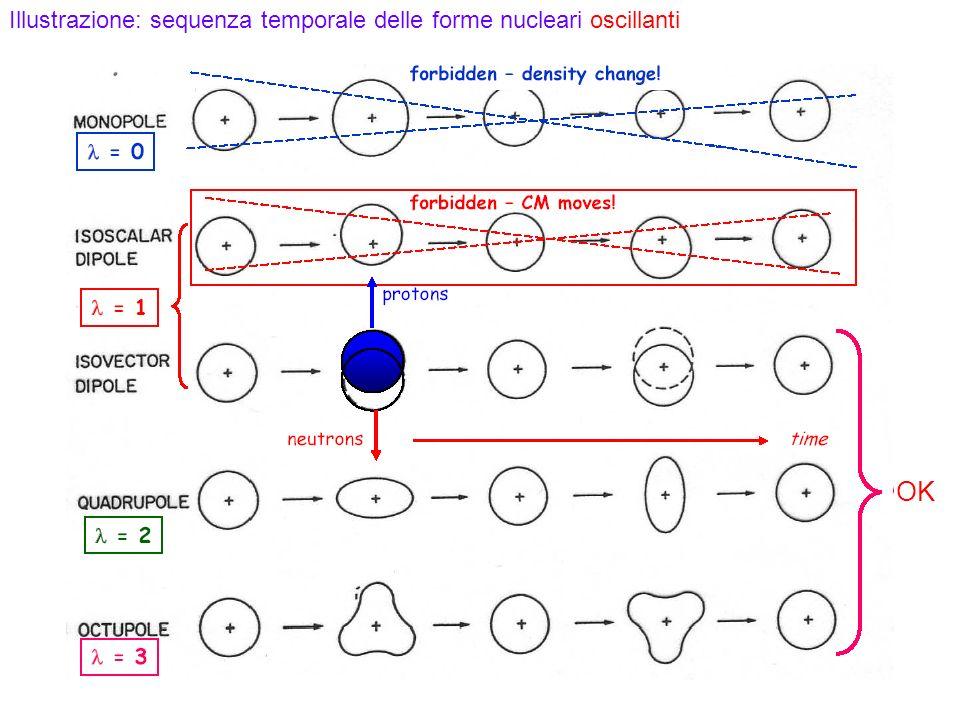 OK Illustrazione: sequenza temporale delle forme nucleari oscillanti