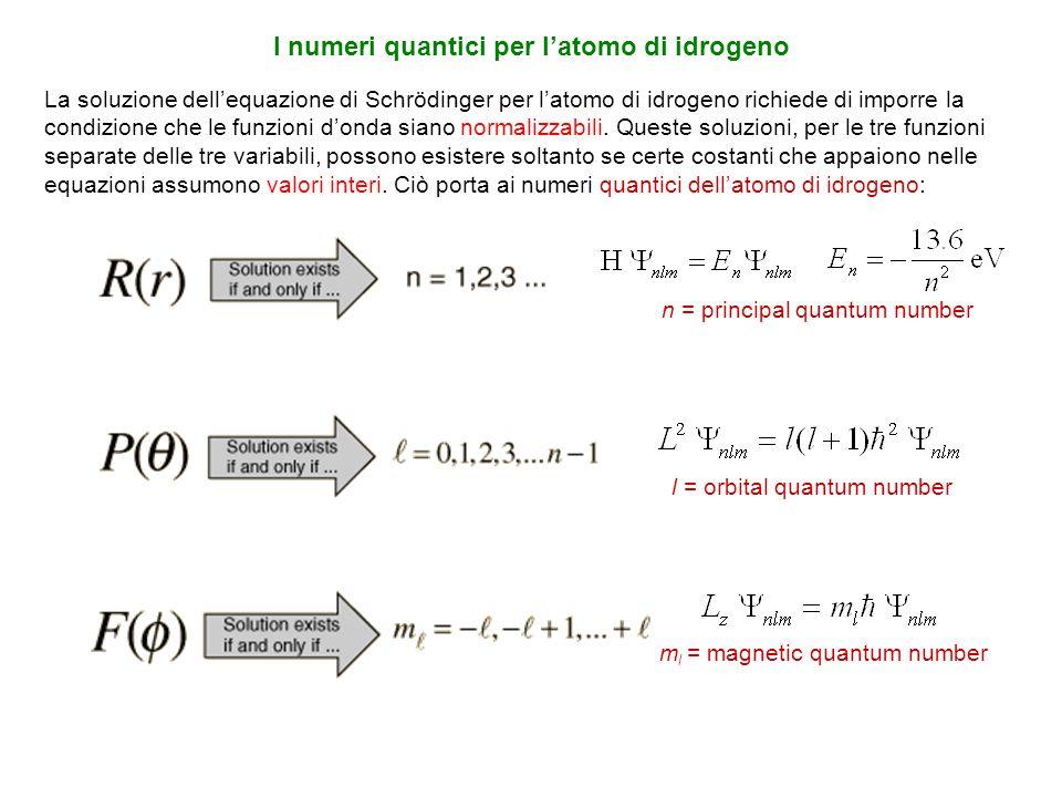 I numeri quantici per l'atomo di idrogeno