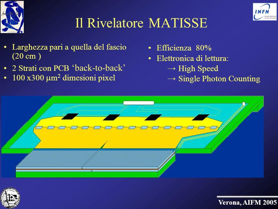 Il Rivelatore MATISSE Larghezza pari a quella del fascio (20 cm )