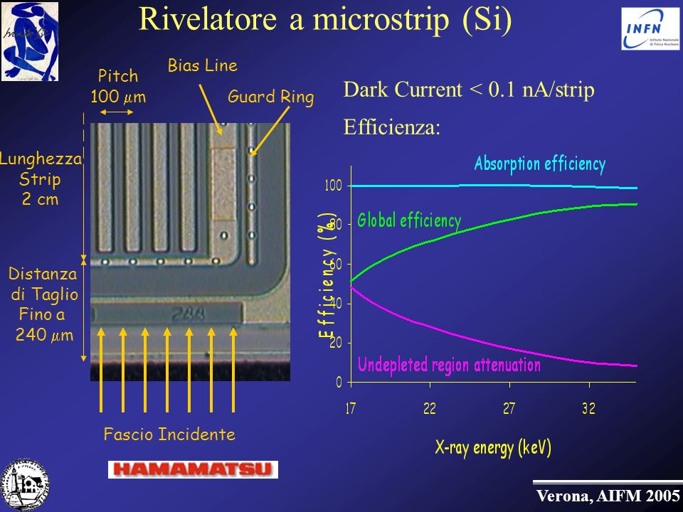 Rivelatore a microstrip (Si)