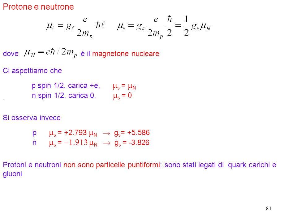 Protone e neutrone dove è il magnetone nucleare Ci aspettiamo che
