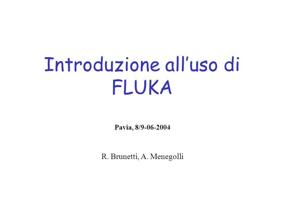 Introduzione all'uso di FLUKA
