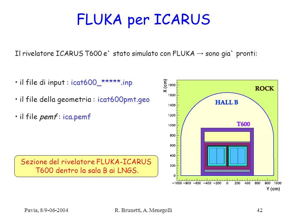 FLUKA per ICARUS il file di input : icat600_*****.inp
