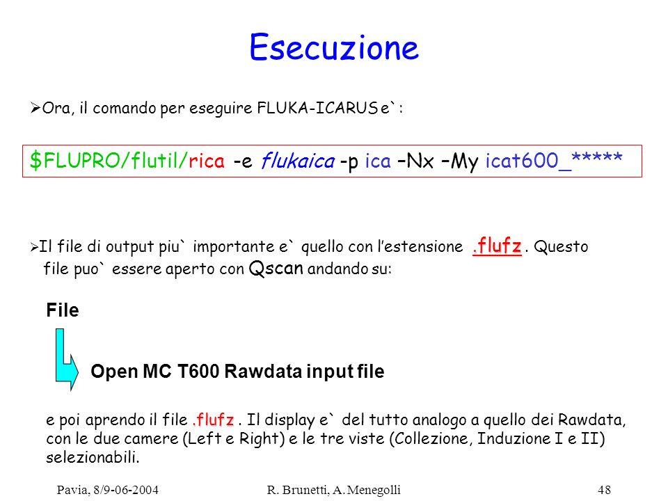 Esecuzione Ora, il comando per eseguire FLUKA-ICARUS e`: $FLUPRO/flutil/rica -e flukaica -p ica –Nx –My icat600_*****