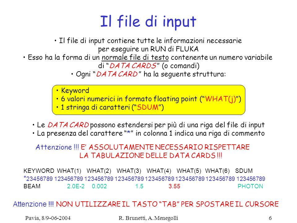 Il file di input Il file di input contiene tutte le informazioni necessarie. per eseguire un RUN di FLUKA.