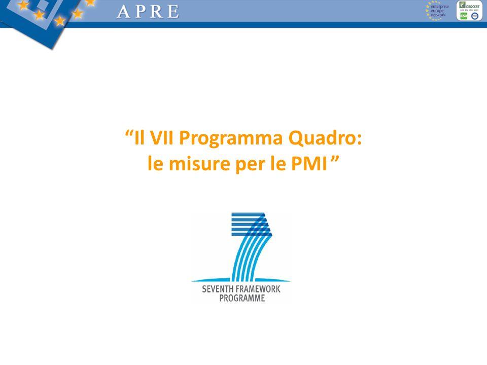 Il VII Programma Quadro: