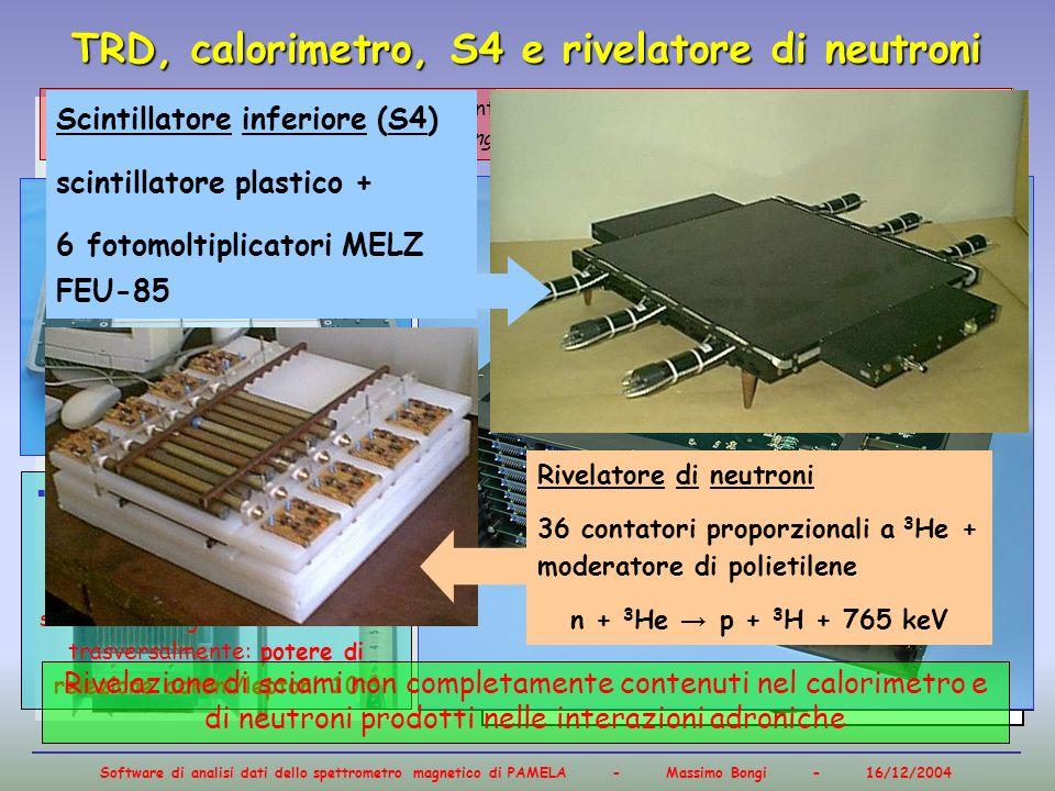 TRD, calorimetro, S4 e rivelatore di neutroni