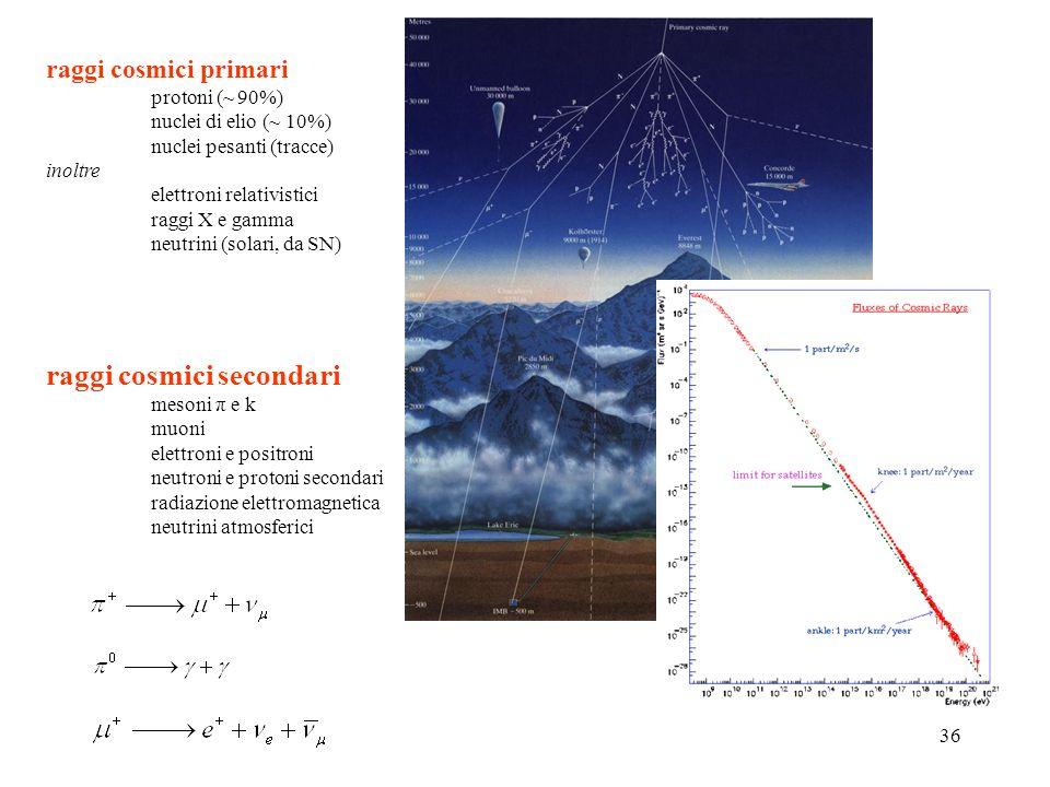 raggi cosmici secondari