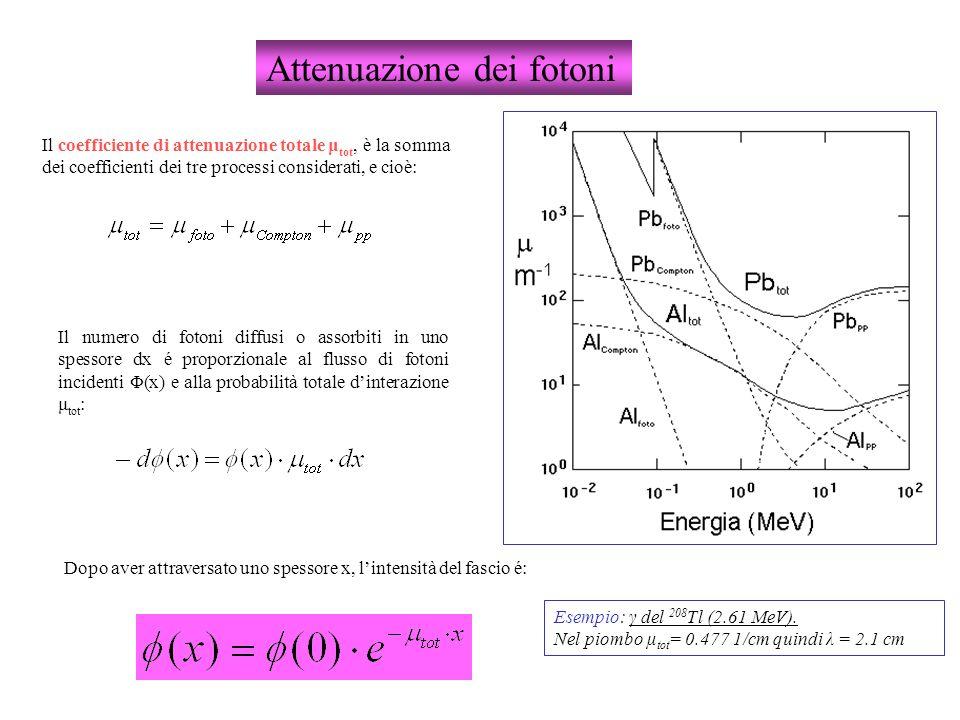 Attenuazione dei fotoni