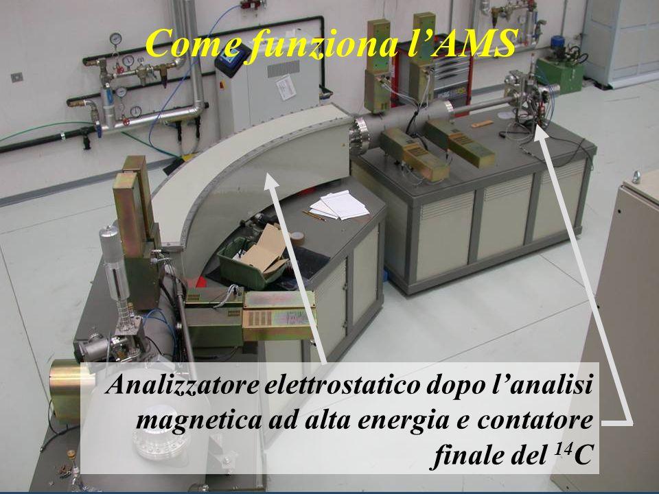 Come funziona l'AMS Il reperto opportunamente pretrattato viene collocato nella sorgente di ioni dell'acceleratore.