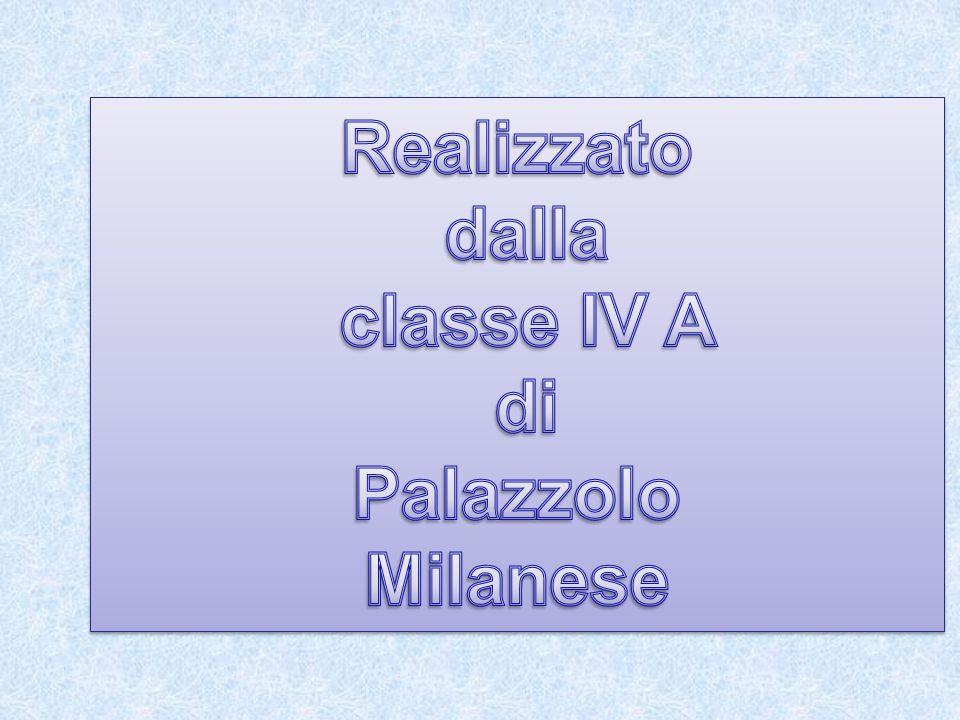 Realizzato dalla classe IV A di Palazzolo Milanese