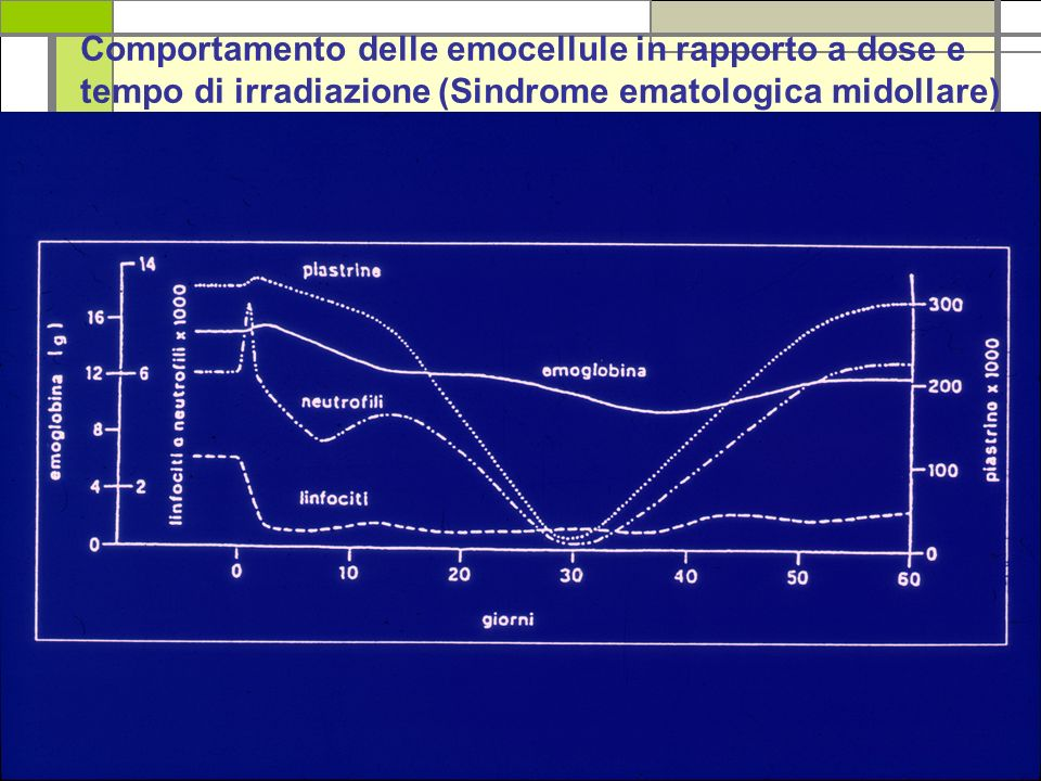 Comportamento delle emocellule in rapporto a dose e tempo di irradiazione (Sindrome ematologica midollare)