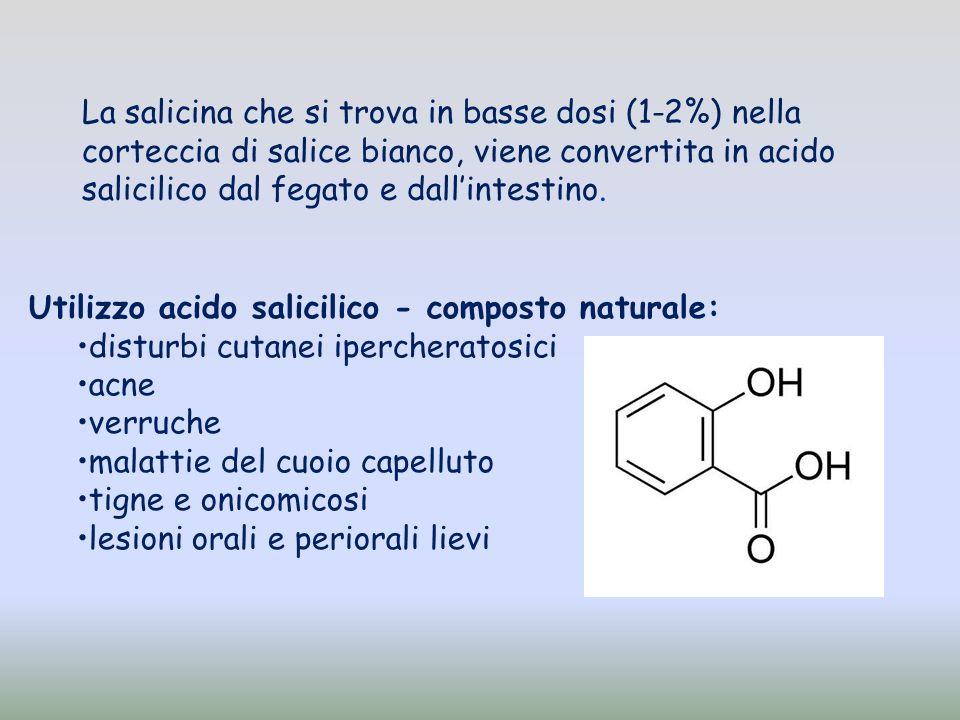 La salicina che si trova in basse dosi (1-2%) nella corteccia di salice bianco, viene convertita in acido salicilico dal fegato e dall'intestino.