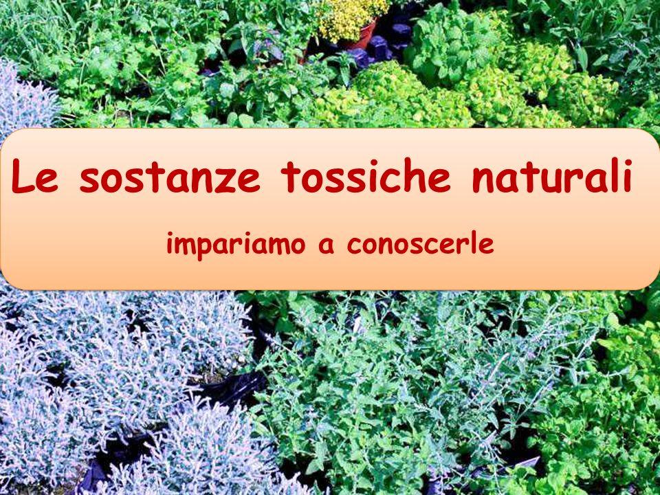 Le sostanze tossiche naturali