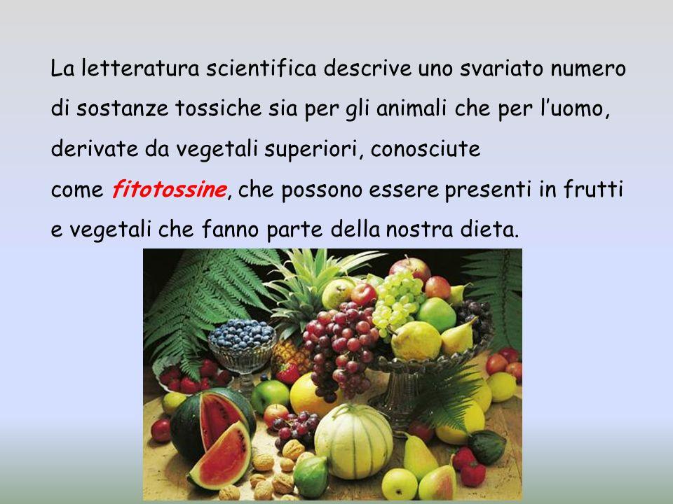 La letteratura scientifica descrive uno svariato numero di sostanze tossiche sia per gli animali che per l'uomo, derivate da vegetali superiori, conosciute come fitotossine, che possono essere presenti in frutti e vegetali che fanno parte della nostra dieta.
