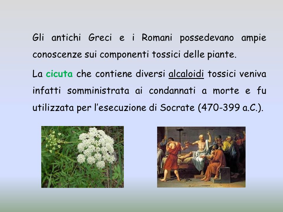 Gli antichi Greci e i Romani possedevano ampie conoscenze sui componenti tossici delle piante.