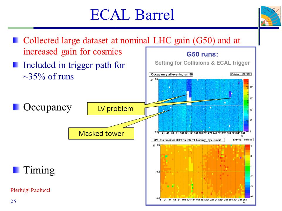 ECAL Barrel Occupancy Timing