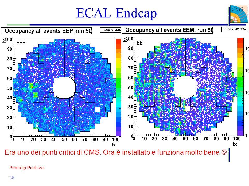 ECAL Endcap EE+ EE- Era uno dei punti critici di CMS.