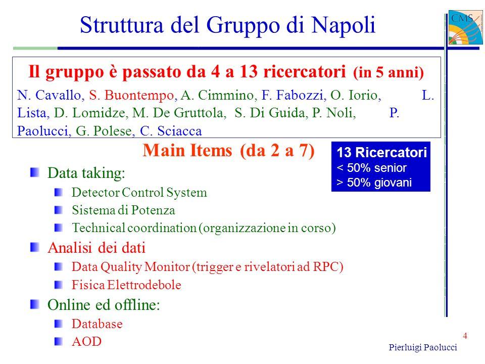 Struttura del Gruppo di Napoli