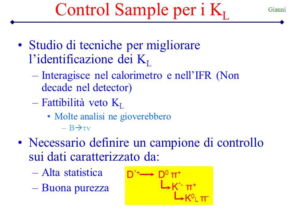 Control Sample per i KL Gianni. Studio di tecniche per migliorare l'identificazione dei KL.