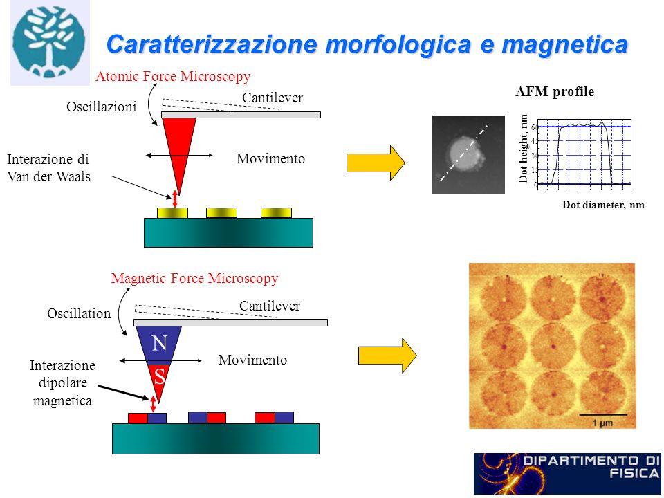 Caratterizzazione morfologica e magnetica