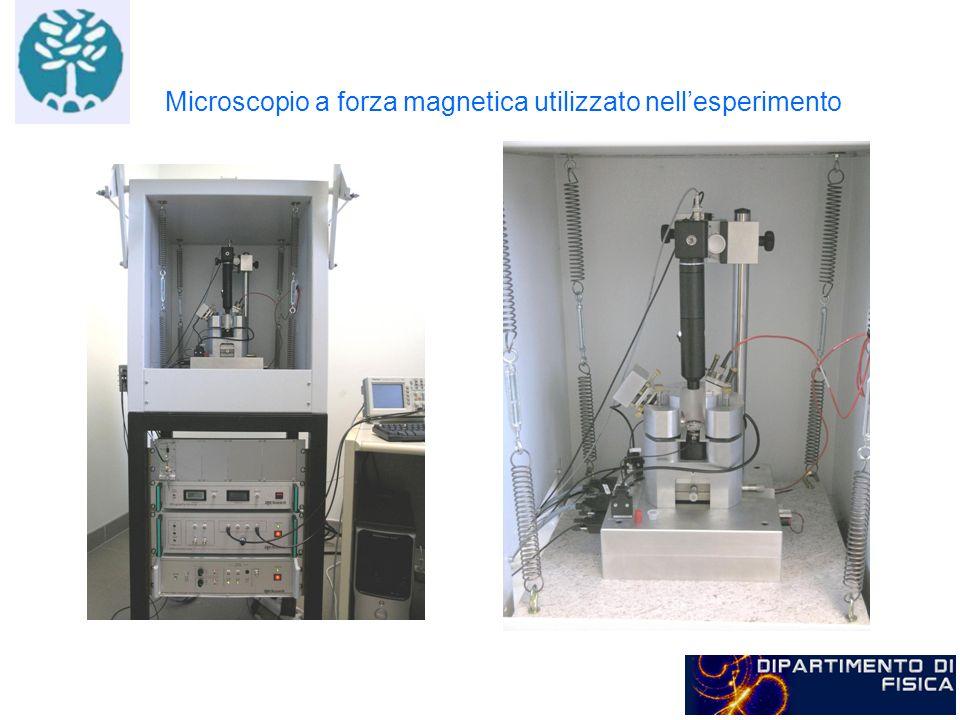 Microscopio a forza magnetica utilizzato nell'esperimento