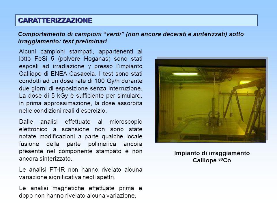 Impianto di irraggiamento Calliope 60Co