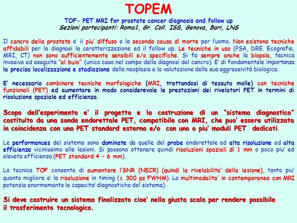 Sezioni partecipanti: Roma1, Gr. Coll. ISS, Genova, Bari, LNS