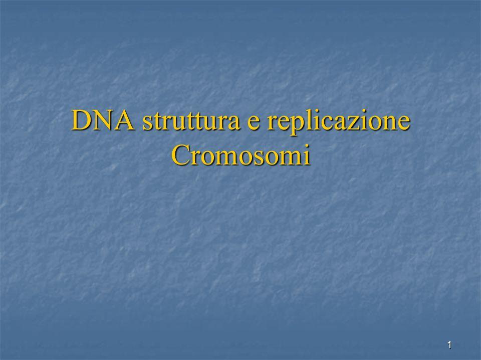 DNA struttura e replicazione Cromosomi