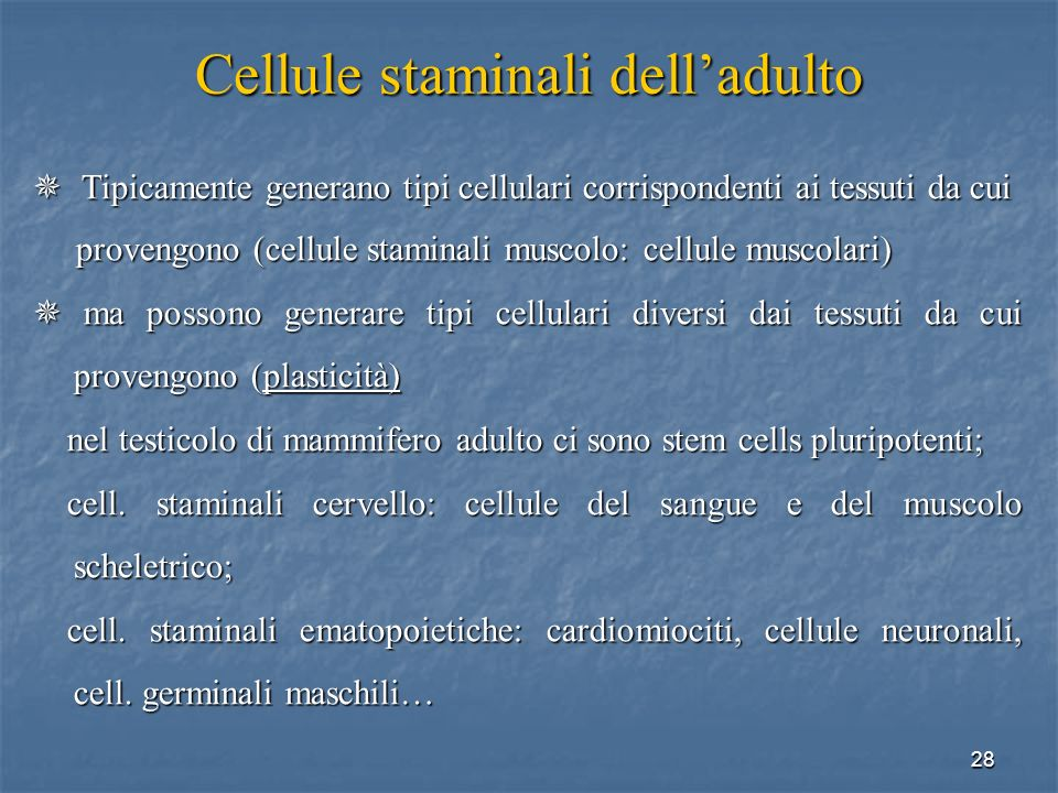Cellule staminali dell'adulto
