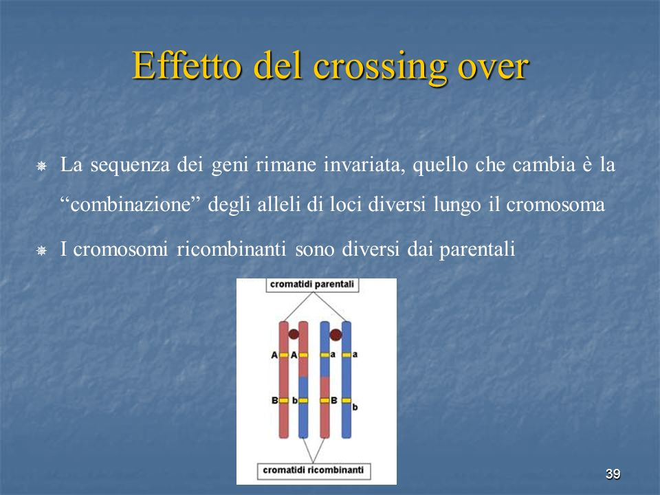 Effetto del crossing over