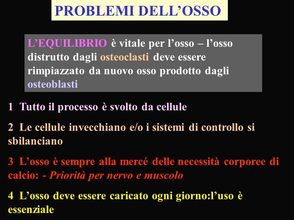 PROBLEMI DELL'OSSO