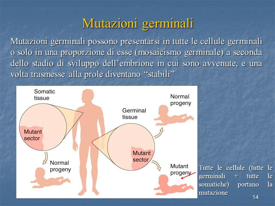 Mutazioni germinali