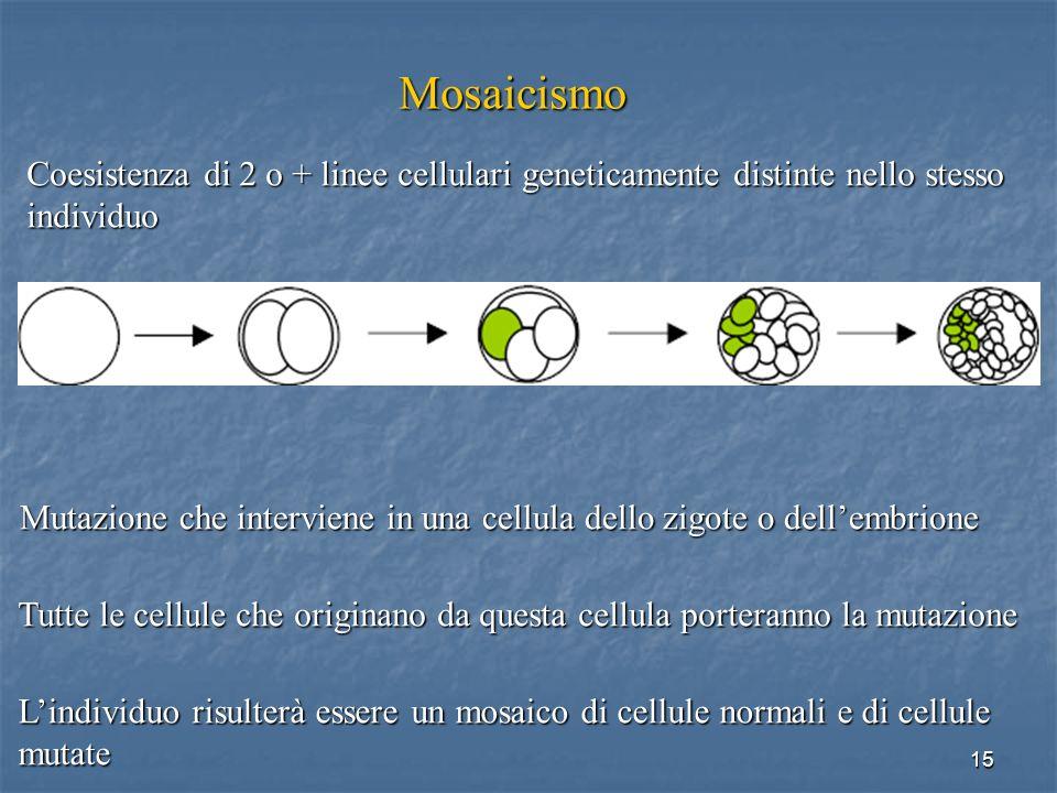 Mosaicismo Coesistenza di 2 o + linee cellulari geneticamente distinte nello stesso. individuo.