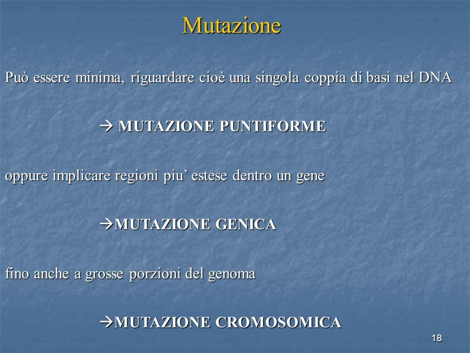 Mutazione Può essere minima, riguardare cioè una singola coppia di basi nel DNA.  MUTAZIONE PUNTIFORME.