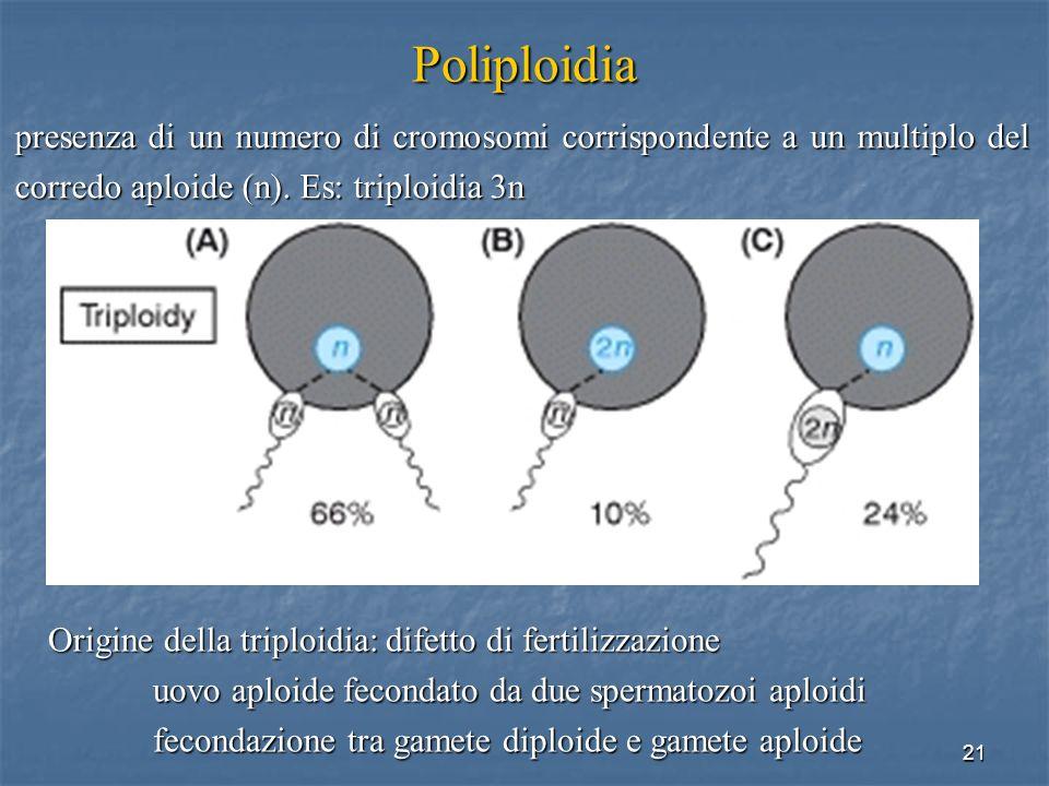 Poliploidia presenza di un numero di cromosomi corrispondente a un multiplo del corredo aploide (n). Es: triploidia 3n.