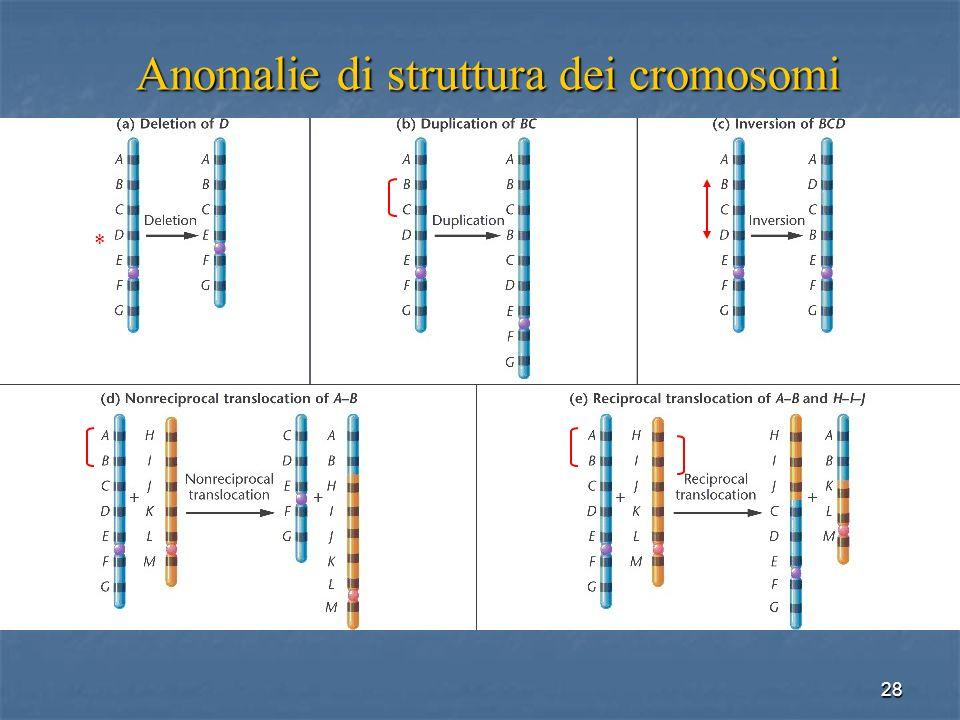 Anomalie di struttura dei cromosomi