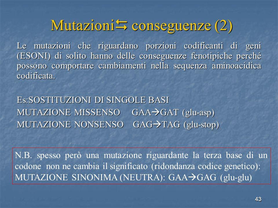 Mutazioni conseguenze (2)