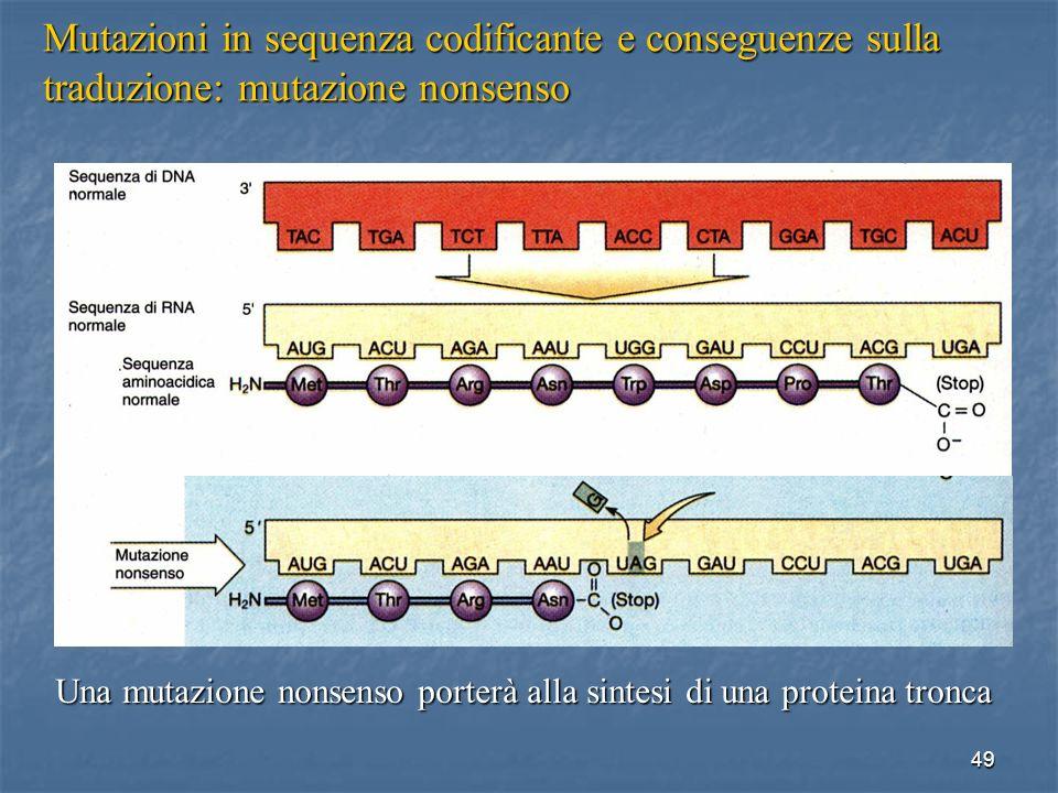 Mutazioni in sequenza codificante e conseguenze sulla traduzione: mutazione nonsenso