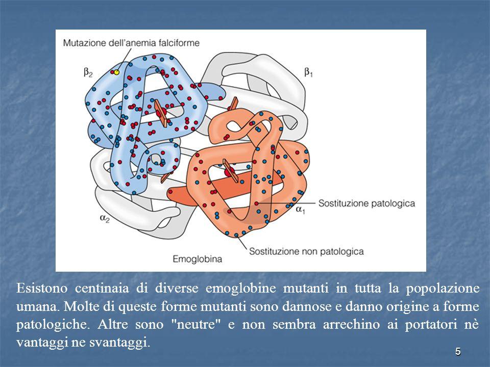 http://www.med.unibs.it/~marchesi/enzimologia/HB/last.htm