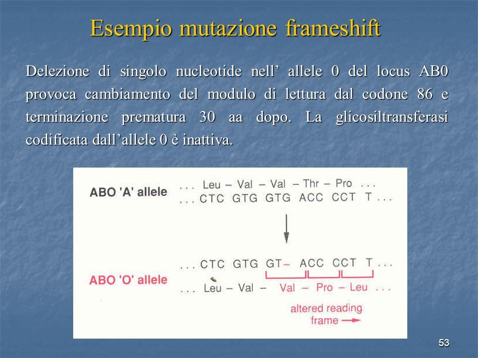 Esempio mutazione frameshift