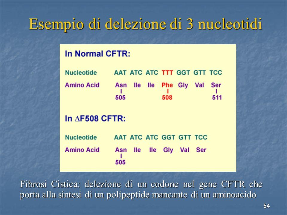 Esempio di delezione di 3 nucleotidi