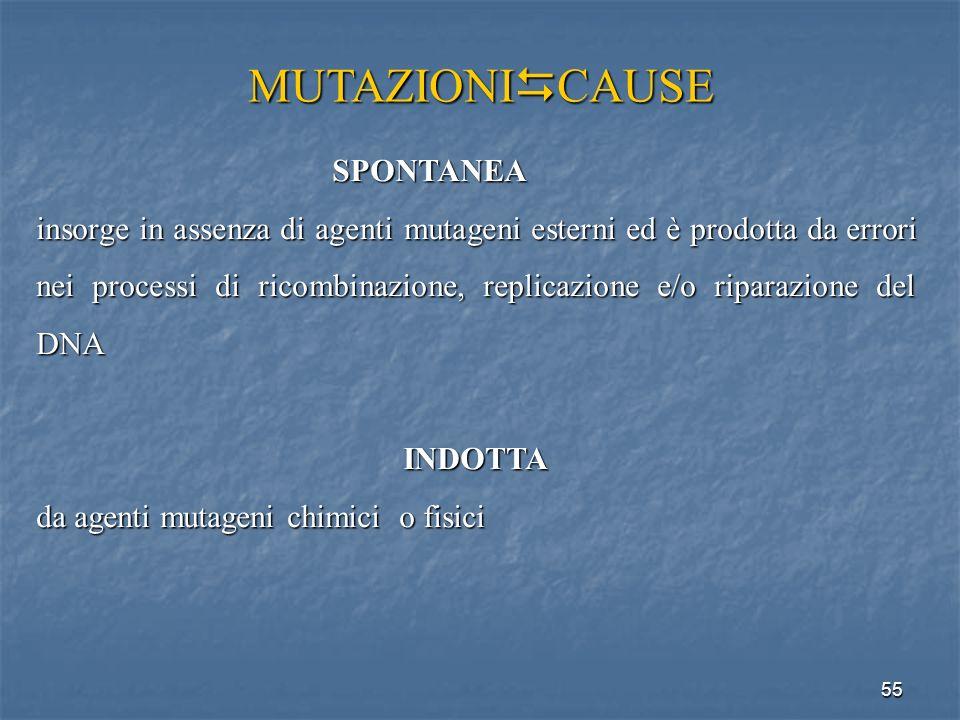 MUTAZIONICAUSE SPONTANEA